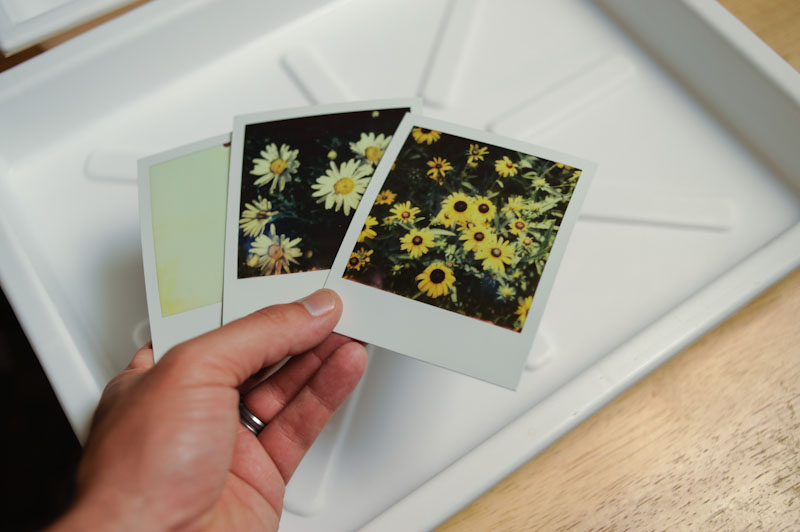 Images for emulsion transfers