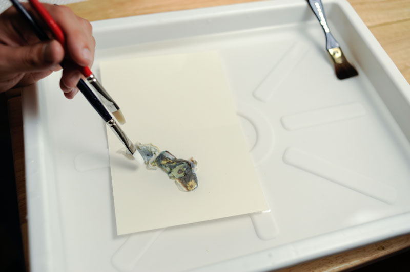 Moved the emulsion on top of the submerged paper ..